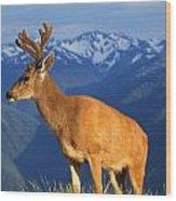 Deer With Antlers, Mountain Range In Wood Print