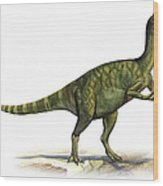Deinocheirus Mirificus, A Prehistoric Wood Print