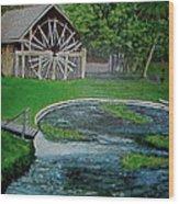 Deleon Springs Wood Print