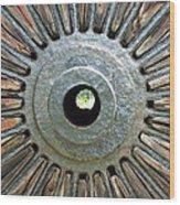 Deleon Springs Wheel Spoke Wood Print