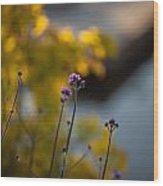 Delicate Bursts Of Purple Wood Print