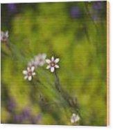 Delicate Flowers Wood Print