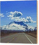 Denali Highway Wood Print