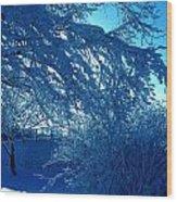 Denmark In Winter Wood Print