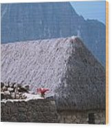 Depositos Qolgas Wood Print