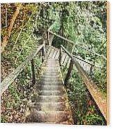 Descend Wood Print
