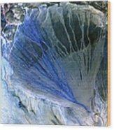 Desert Alluvial Fan, Satellite Image Wood Print