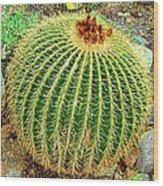 Desert Cactus Wood Print