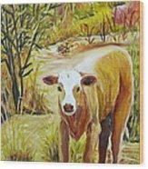 Desert Calf Wood Print
