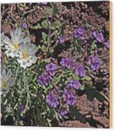 Desert Chicory And Heliotrope Wood Print