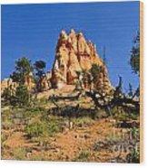 Desert Landscape Le Wood Print