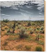 Desert Of New Mexico Wood Print