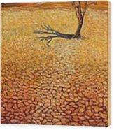 Desert Pan Wood Print