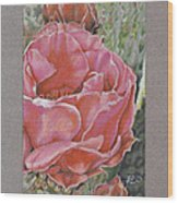 Desert Rose Wood Print