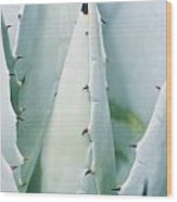 Desert Safety Wood Print