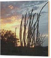 Desert Sunset Ocotillos Wood Print