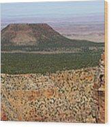 Desert Watch Tower View Wood Print