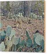 Desert Wolf Wood Print