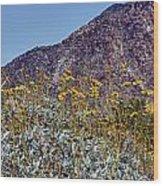 Desert Yellow Wood Print