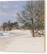 Deserted Island Wood Print