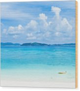 Deserted Tropical Beach And Islands On Horizon Wood Print