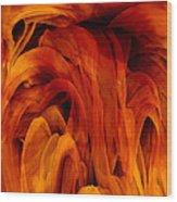 Desiderio Wood Print