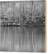 Desolate Splendor Bw Wood Print