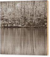 Desolate Splendor S Wood Print