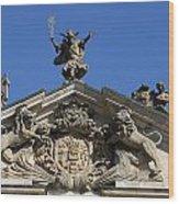 Detail Palace Weissenstein Wood Print