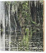 Details Of A Florida River Wood Print