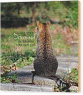 Determined Encouraging Cat Photo Wood Print