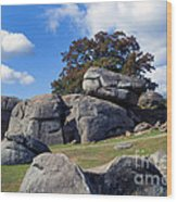 Devil's Den Formation 25 Wood Print