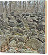 Devil's Potato Patch - Montgomery County - Pennsylvania Wood Print