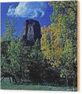 Devil's Tower Autumn Wood Print