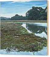 Devoran River Wood Print