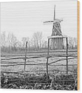 Dezwaan Windmill In Holland Michigan During November Wood Print