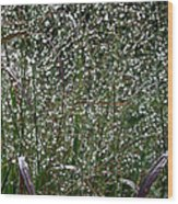 Diamonds By Nature Wood Print