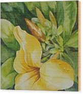 Dianne's Flower Wood Print
