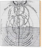 Dies Microcosmicus, Nox Microcosmica Wood Print by Science Source