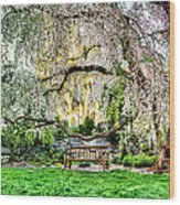 Digital Liquid -  Cherry Blossoms At The Washington National Cathedral Wood Print by Metro DC Photography