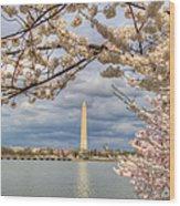 Digital Liquid - Cherry Blossoms Washington Dc 4 Wood Print