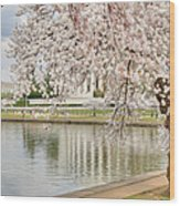 Digital Liquid - Cherry Blossoms Washington Dc 6 Wood Print by Metro DC Photography