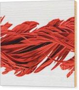 Digital Streak Image Of A Poinsettia Wood Print