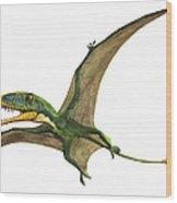 Dimorphodon Macronyx, A Prehistoric Era Wood Print