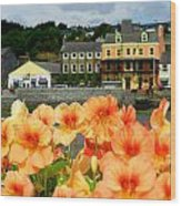 Dingle And Flower Pot Wood Print