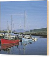 Dingle Peninsula, Dingle Harbour Wood Print