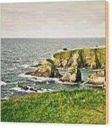 Dingle Peninsula Shoreline 3 Wood Print