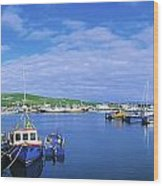 Dingle Town & Harbour, Co Kerry, Ireland Wood Print