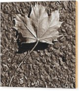 Dipped In Bronze Wood Print