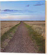 Dirt Road Through The Prairie Wood Print